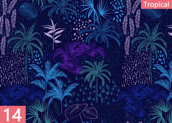 tropical14
